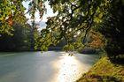 Sonnenlicht im Herbst