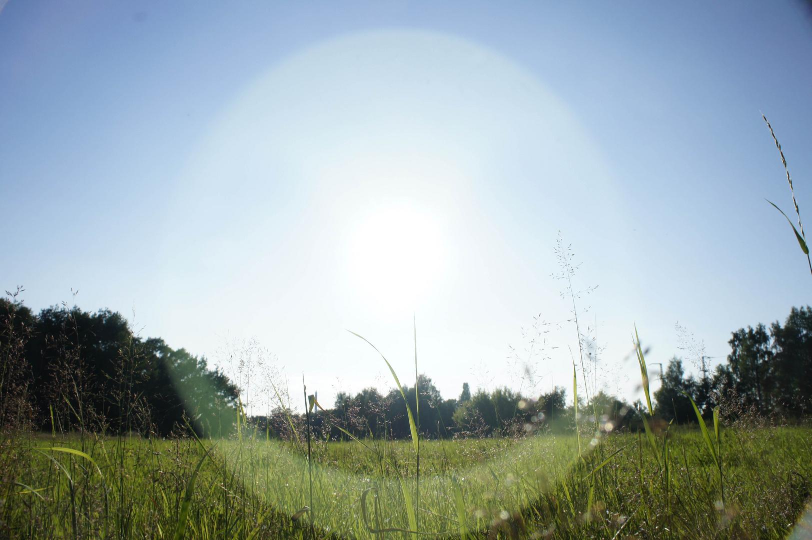 Sonnenring