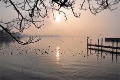 Sonnenschein und Nebel