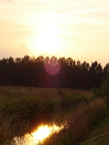 Sonnenspiegelung