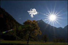 Sonnensternchen ...
