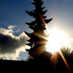 Sonnenstrahlen