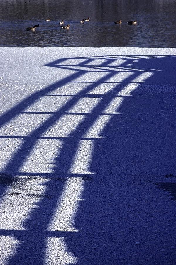 Sonnenstrahlen ließen das Eis des Winters schon schmelzen.