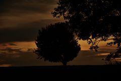 Sonnenuntergänge ......