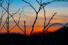 Sonnenuntergang 2010 I