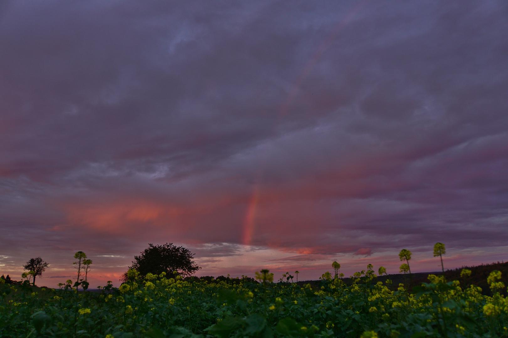 Sonnenuntergang 21.10.2019_05 Foto & Bild