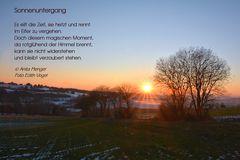 Texte Anita Menger,