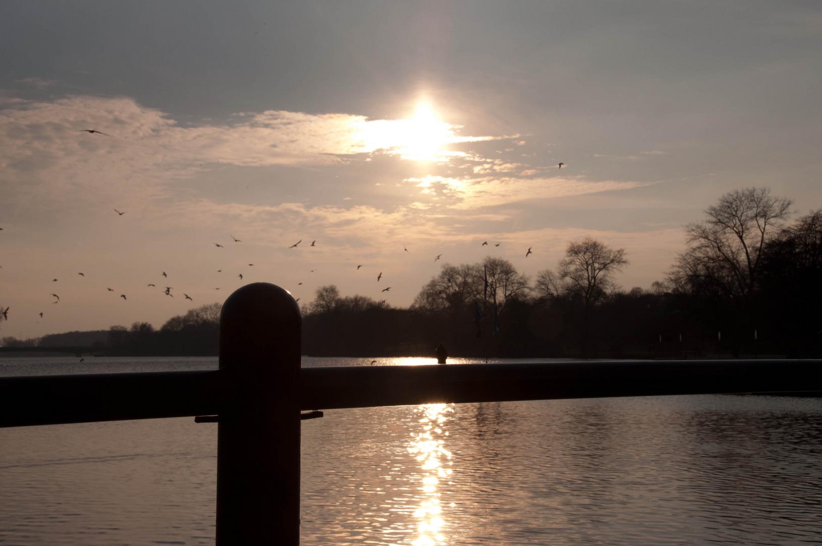 Sonnenuntergang am Aasee