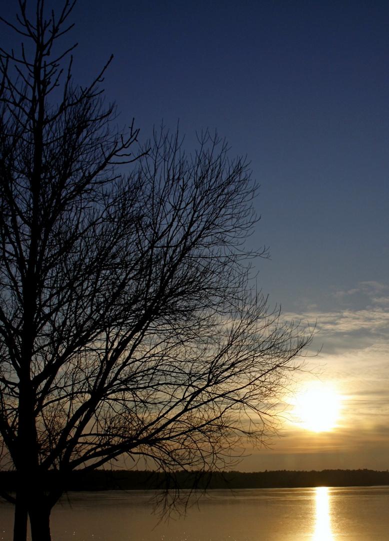Sonnenuntergang am Altmühlsee ... jetzt mit Baum
