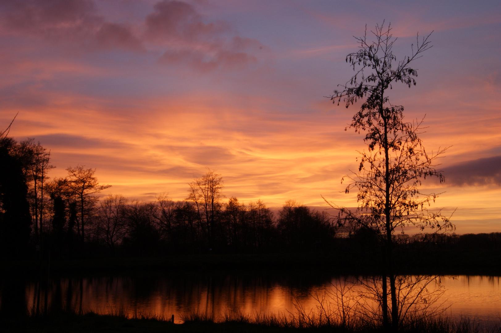 Sonnenuntergang am Biotop