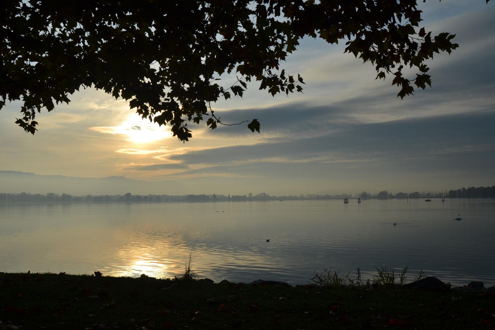 Sonnenuntergang am Bodensee 1
