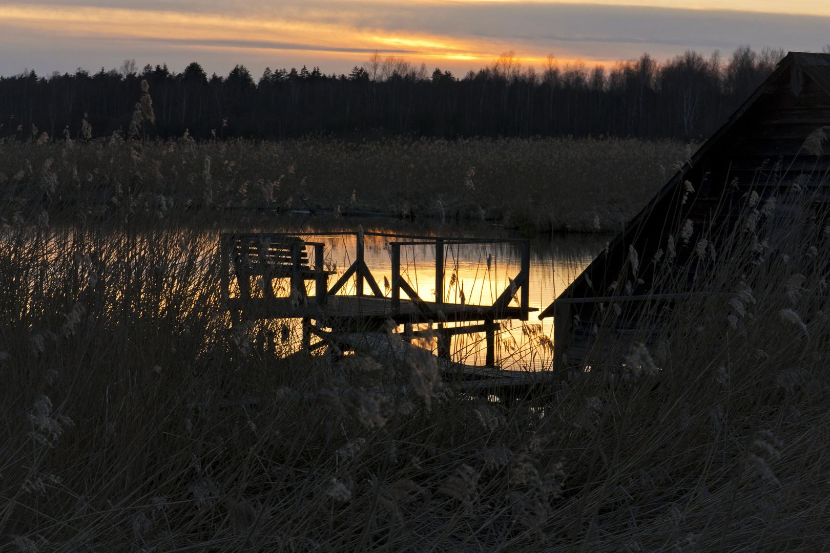 Sonnenuntergang am Federsee