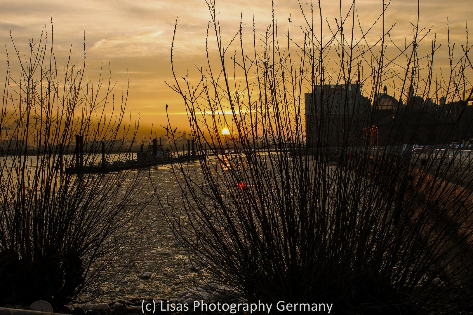 Sonnenuntergang am Fischmarkt