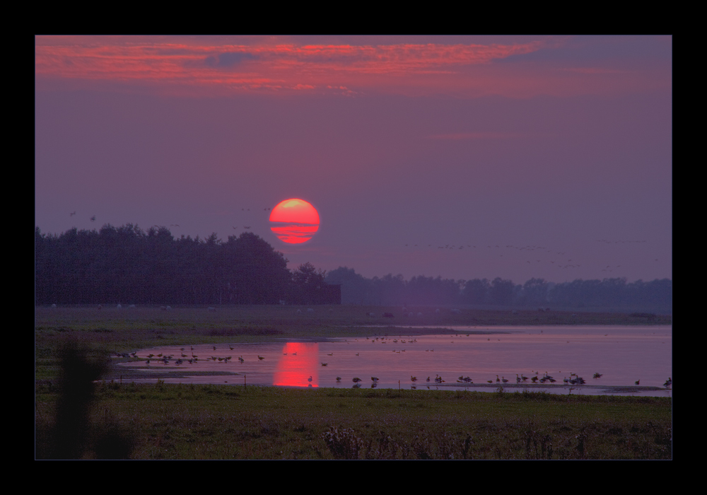 Sonnenuntergang am Gülper See