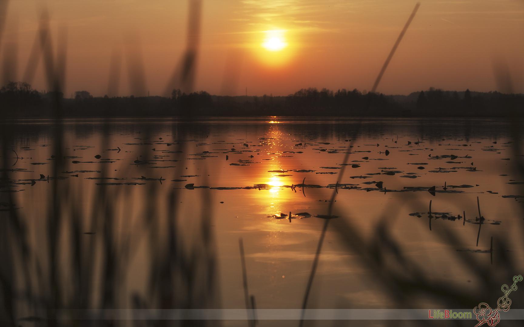 Sonnenuntergang am Heratinger See
