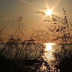 Sonnenuntergang am Kap Arkona / Gellort