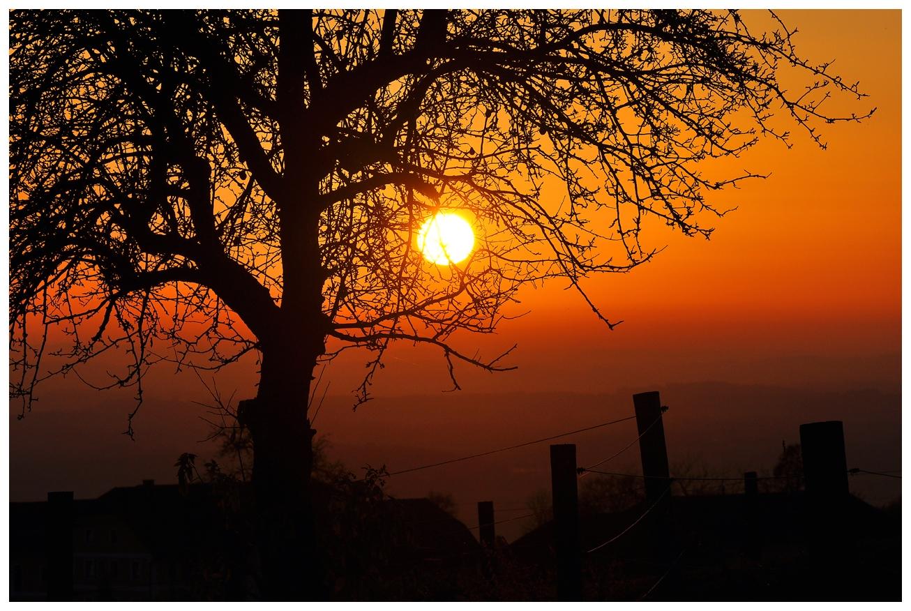 Sonnenuntergang am Mayerhoferberg