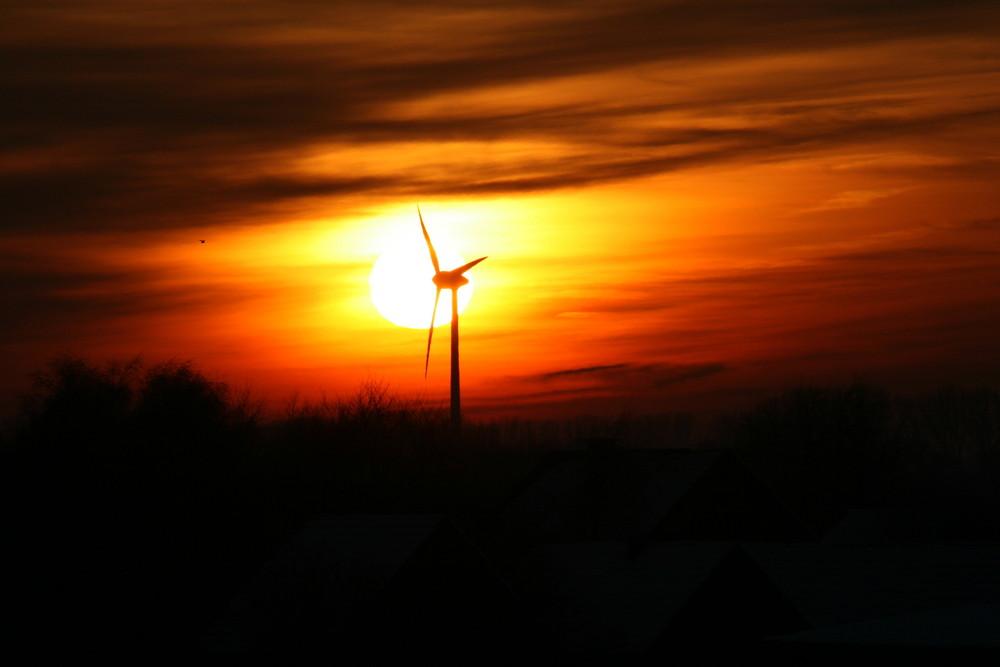 Sonnenuntergang am Niederrhein