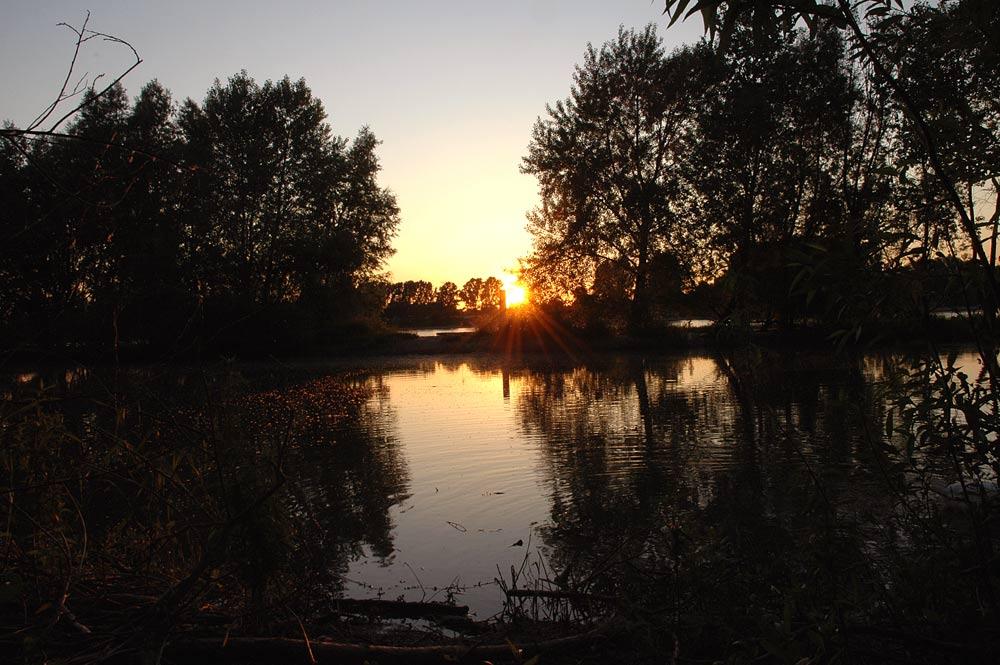 Sonnenuntergang am Rhein die Zweite