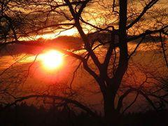 Sonnenuntergang am Rothaarsteig