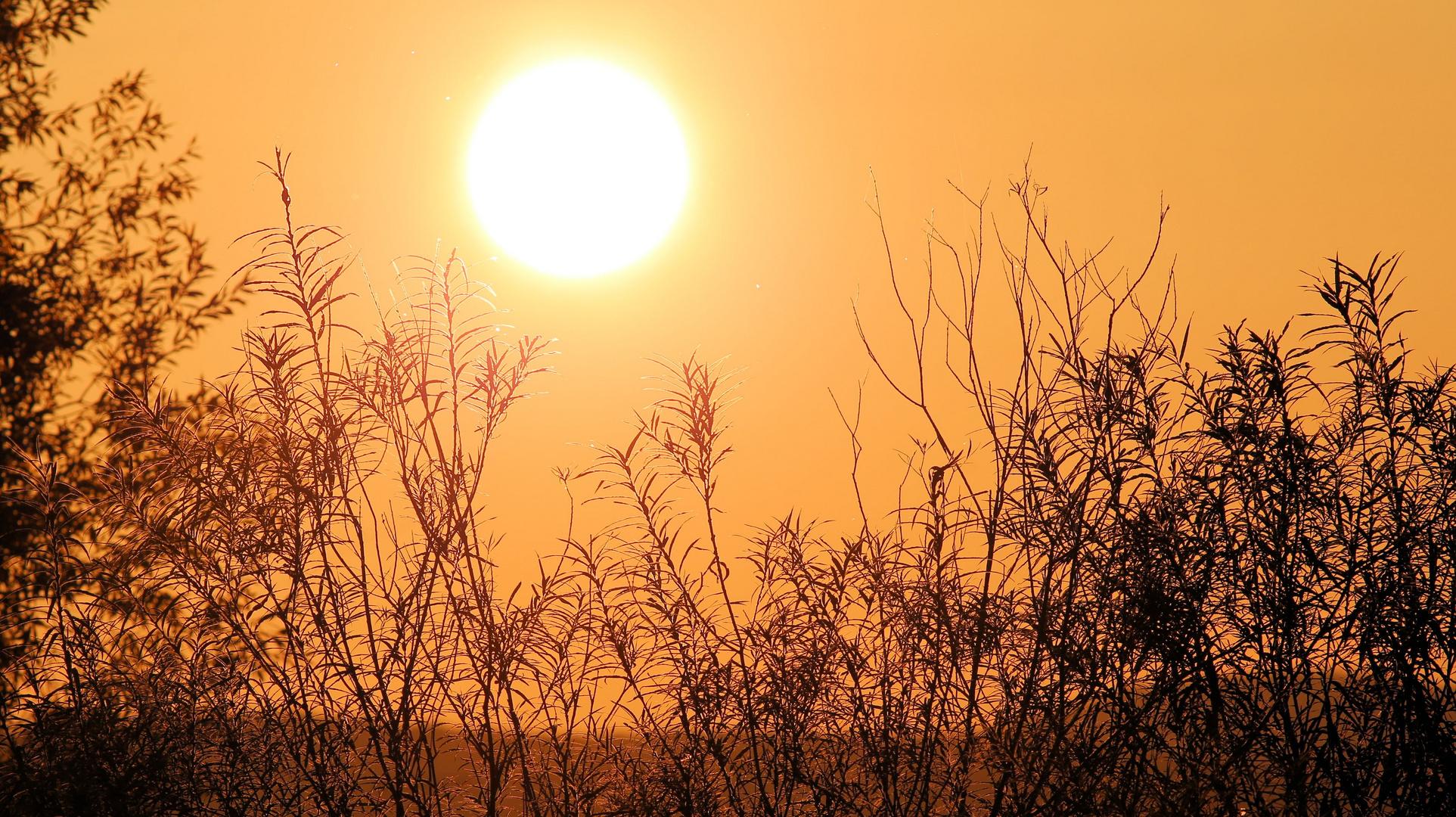 Sonnenuntergang am See....