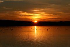 Sonnenuntergang am Steinhuder Meer #2