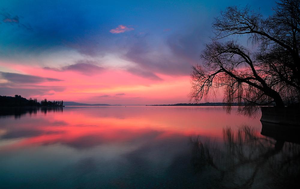 Sonnenuntergang am Untersee - Bodensee