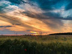 Sonnenuntergang am Waldbad