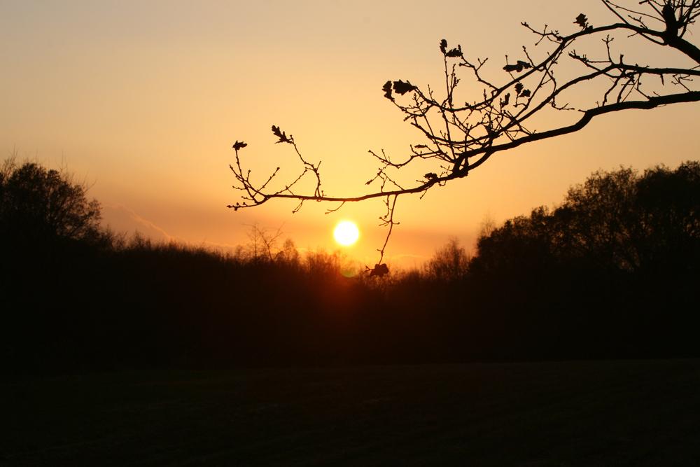 Sonnenuntergang an den Wassertürmen 01