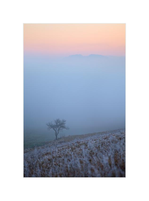 Sonnenuntergang an der Hochnebelgrenze