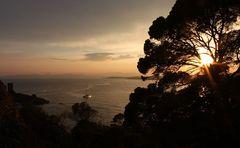 Sonnenuntergang an der Ile d´Or am Cap le Dramont/Cote d´Azur