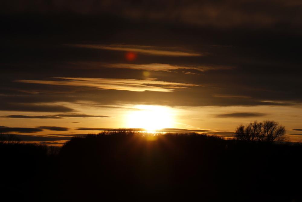 Sonnenuntergang an der Mulde - Bild 4