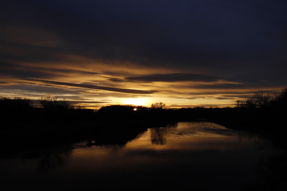Sonnenuntergang an der Mulde - Bild 7