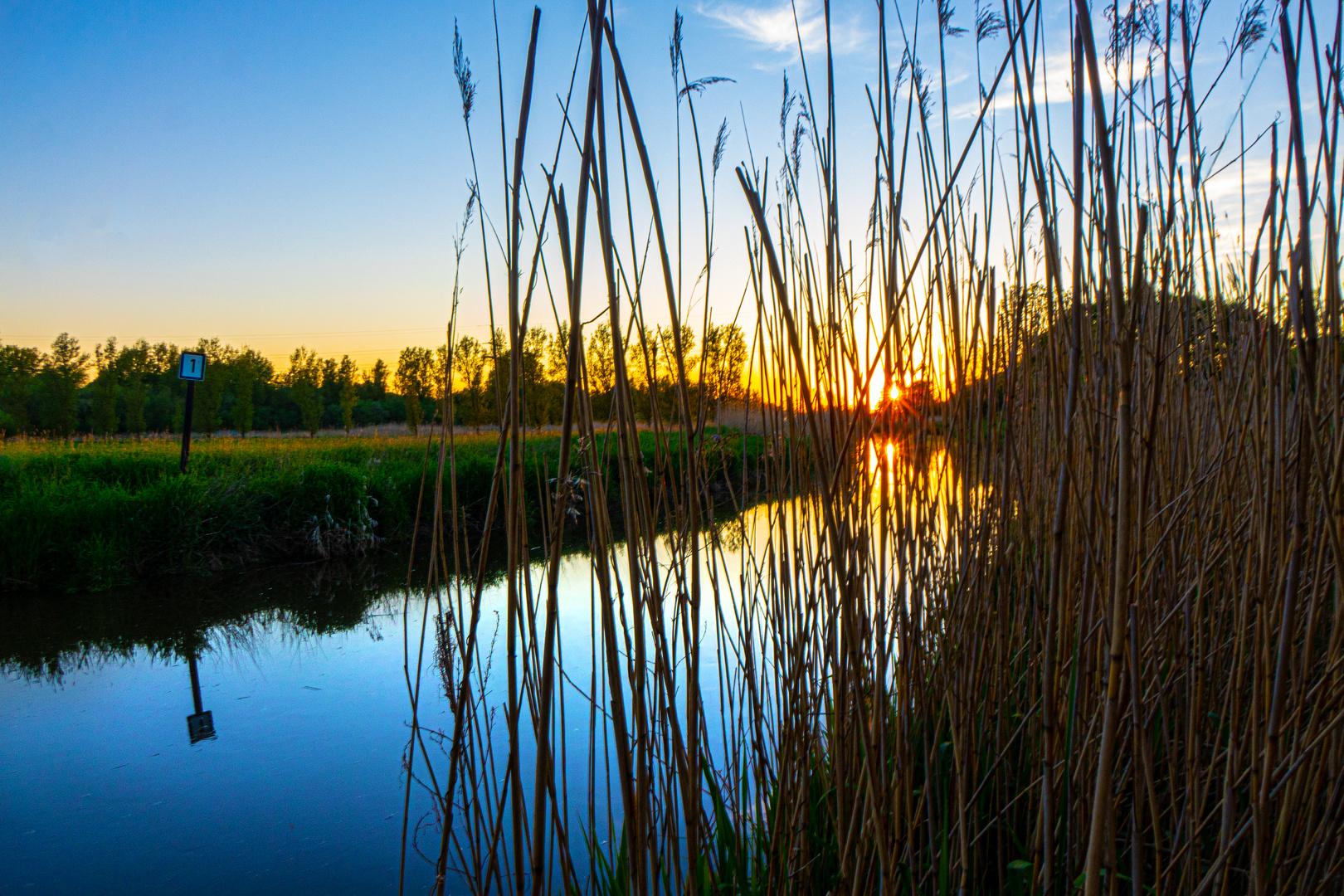 Sonnenuntergang an der Pinnau