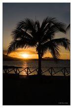 Sonnenuntergang an der Playa Dorada 4