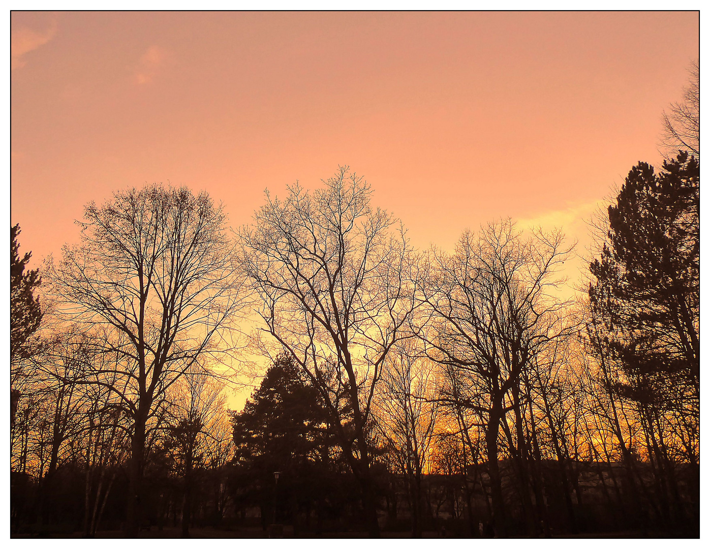 Sonnenuntergang an einem Frühlingstag