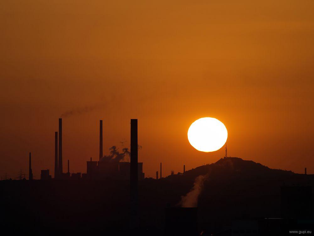 Sonnenuntergang auf dem Tippelsberg