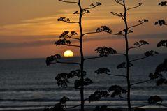 Sonnenuntergang auf den Kap Verden