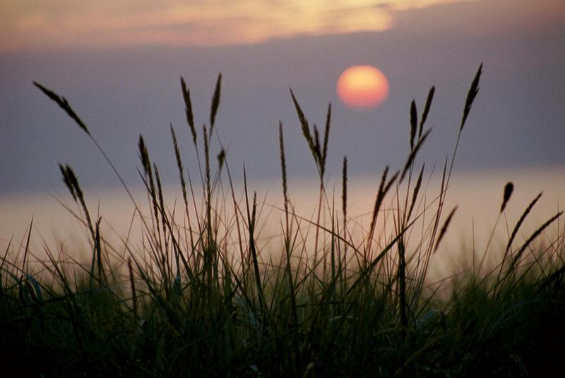 Sonnenuntergang auf Zingst (Neue Version)