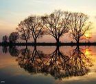 Sonnenuntergang aus meiner masurischen Seiten!
