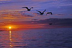 Sonnenuntergang   B0002414