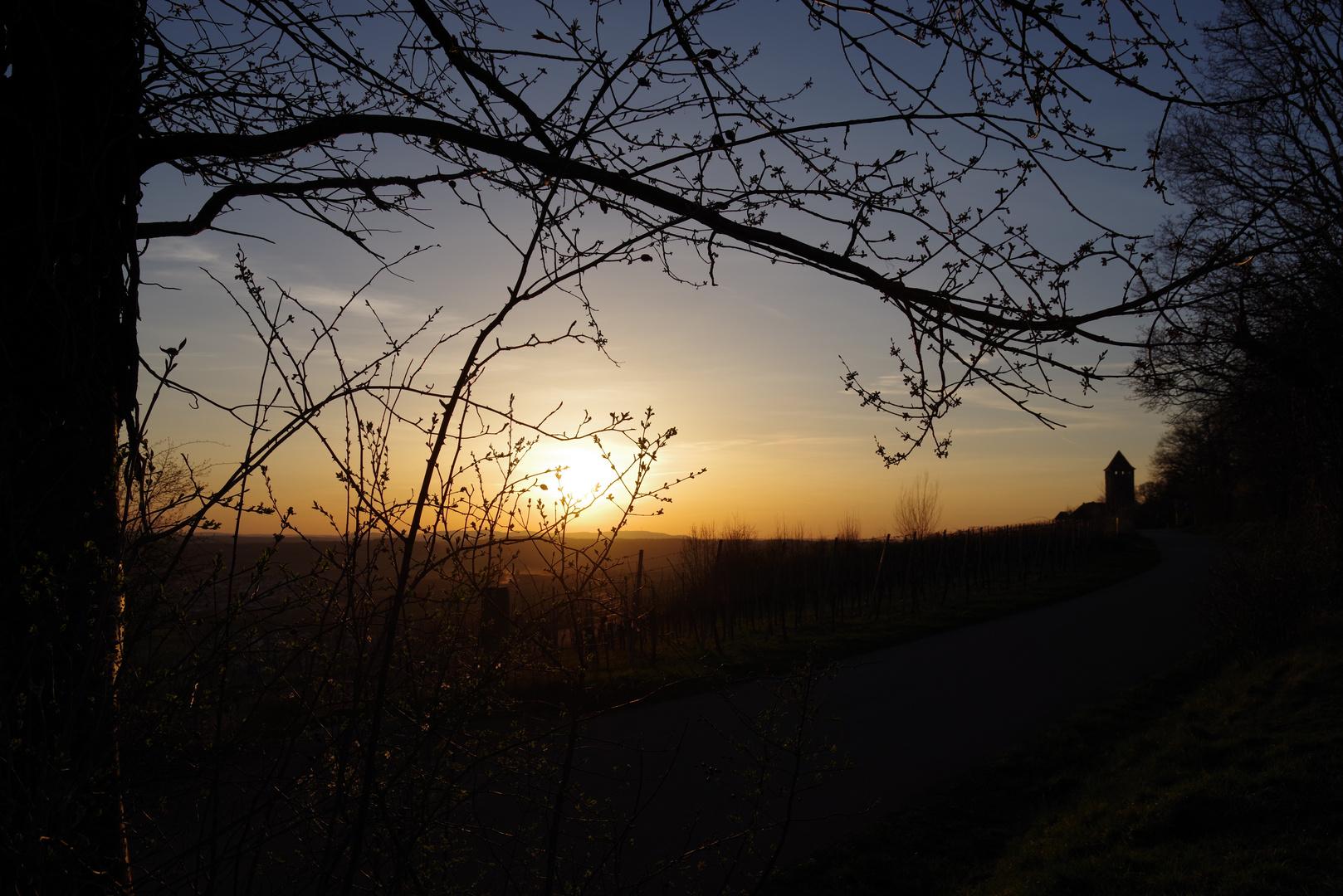 Sonnenuntergang bei der Burg Lichtenberg