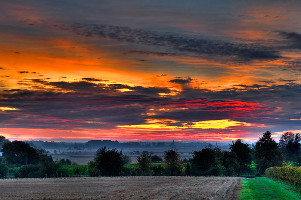 Sonnenuntergang bei Klingenmünster