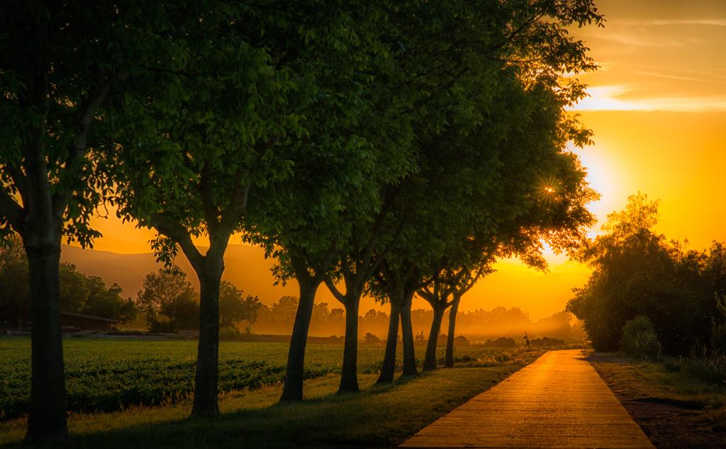Sonnenuntergang bei Neuenburg