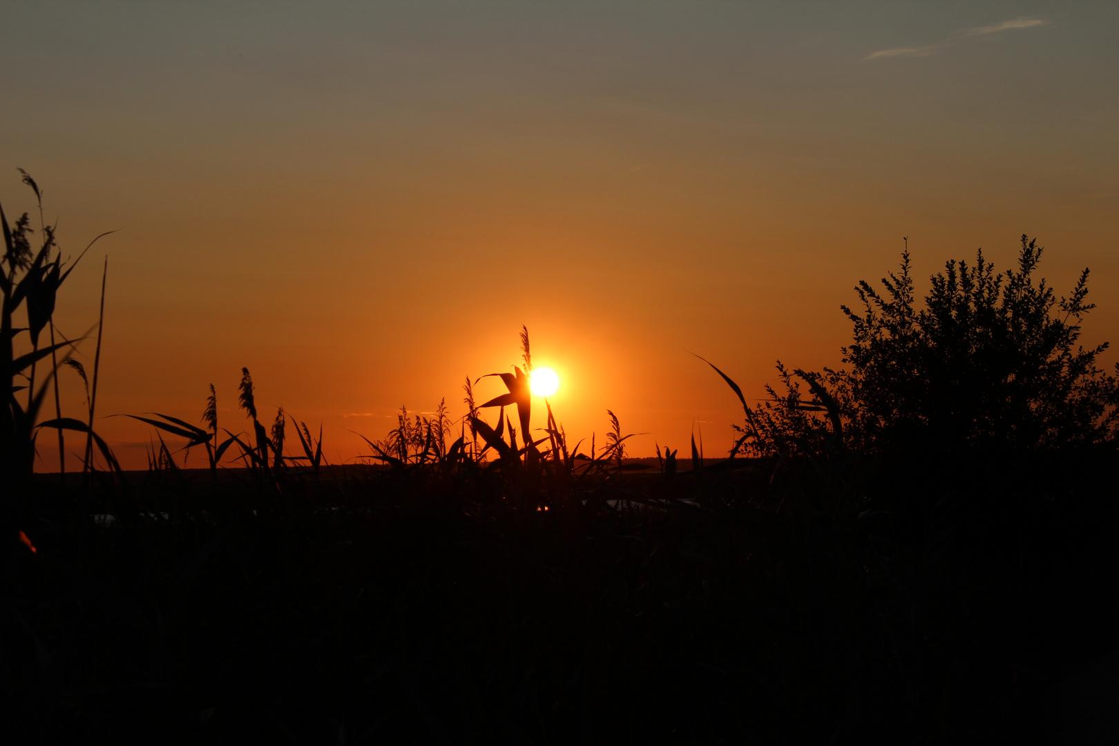 Sonnenuntergang Bodstedter Bodden Bresewitz