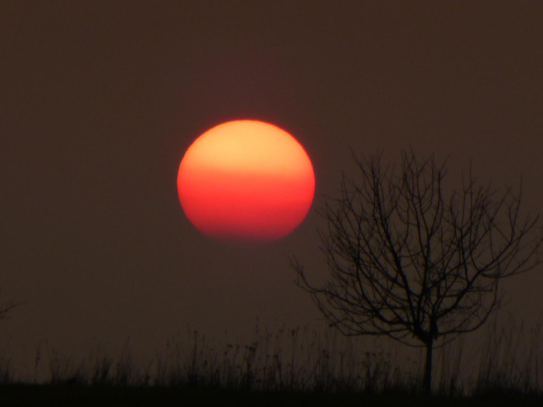Sonnenuntergang Buckow Märkische Schweiz