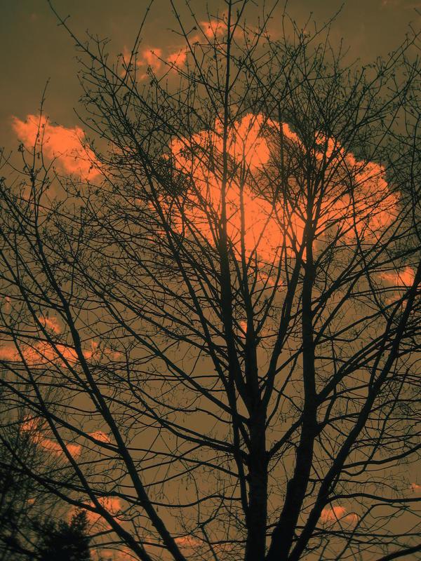 Sonnenuntergang.........