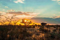Sonnenuntergang-Etosha
