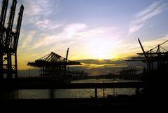 Sonnenuntergang Eurogate
