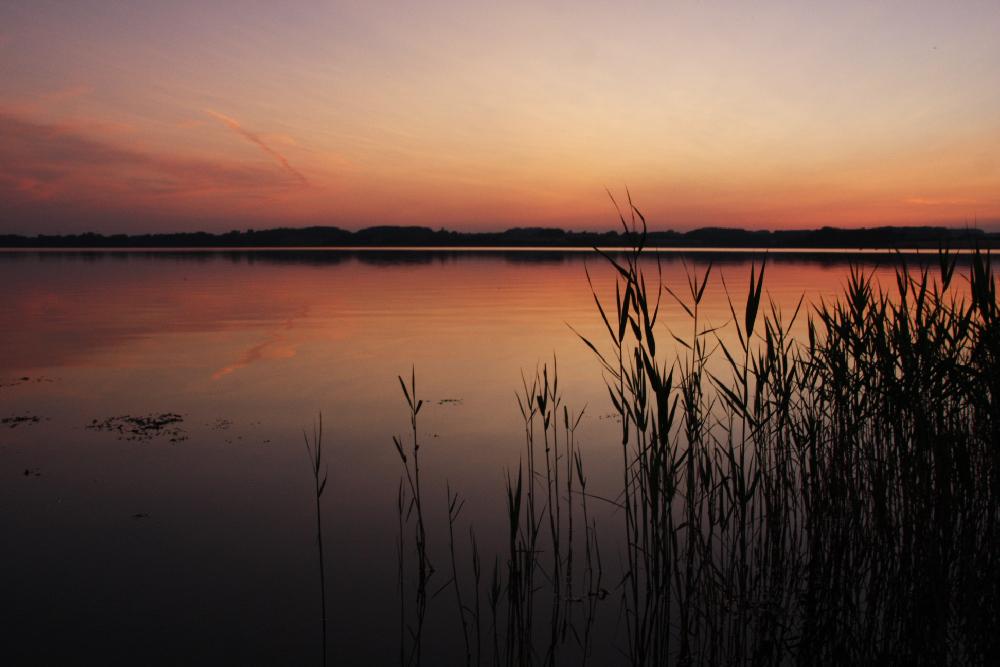 Sonnenuntergang gespiegelt auf der Schlei